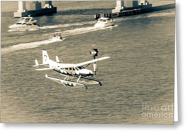 Flight- Landing In The Bay Greeting Card by Rene Triay Photography