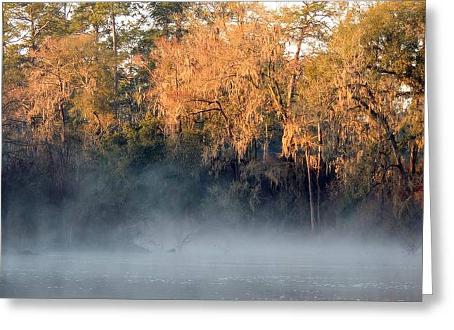 Greeting Card featuring the photograph Flint River 14 by Kim Pate