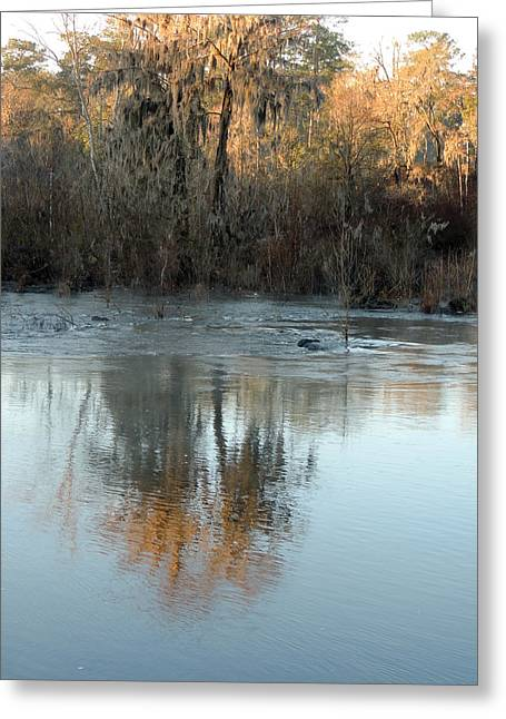 Greeting Card featuring the photograph Flint River 17 by Kim Pate