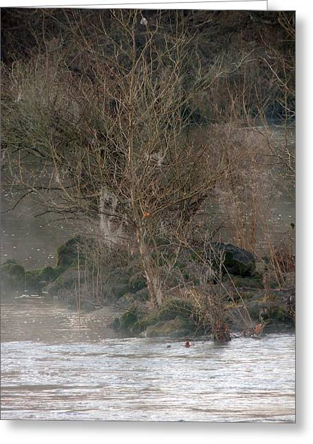 Greeting Card featuring the photograph Flint River 19 by Kim Pate