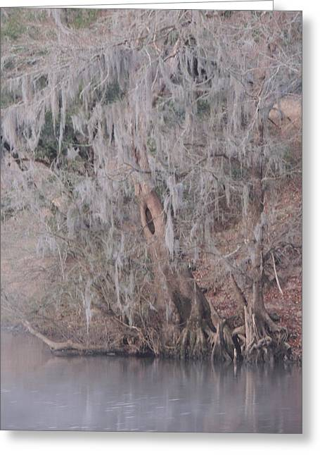 Greeting Card featuring the photograph Flint River 2 by Kim Pate
