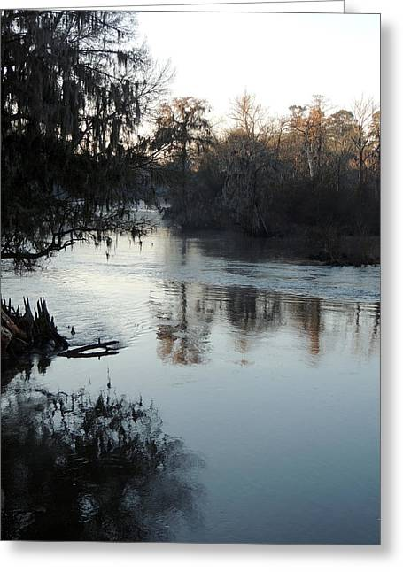 Greeting Card featuring the photograph Flint River 20 by Kim Pate