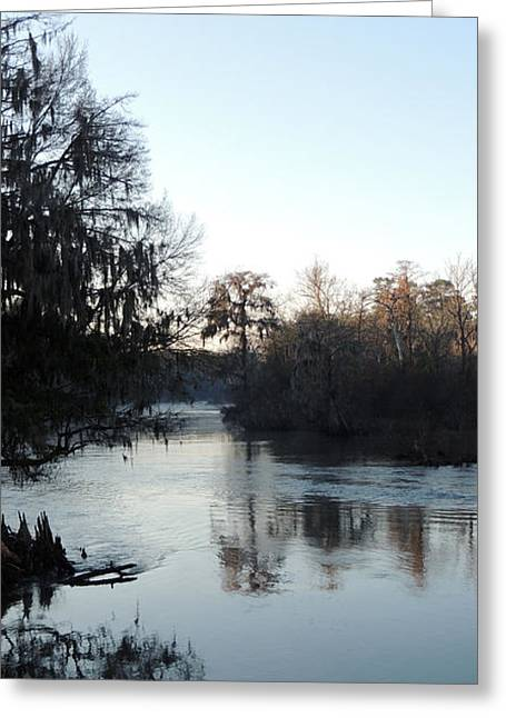 Greeting Card featuring the photograph Flint River 23 by Kim Pate