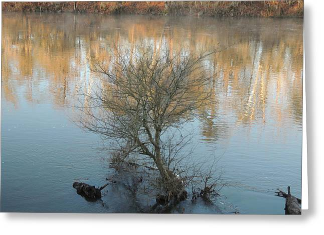 Greeting Card featuring the photograph Flint River 24 by Kim Pate