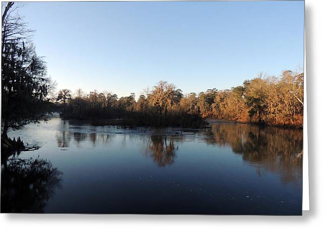 Greeting Card featuring the photograph Flint River 26 by Kim Pate