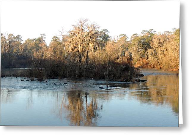 Greeting Card featuring the photograph Flint River 27 by Kim Pate