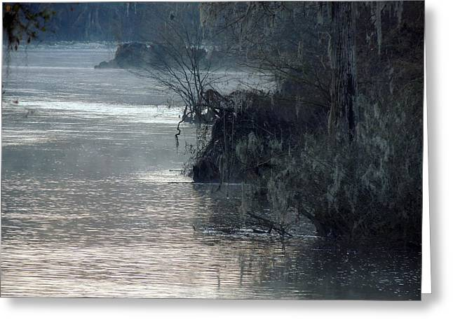 Greeting Card featuring the photograph Flint River 28 by Kim Pate