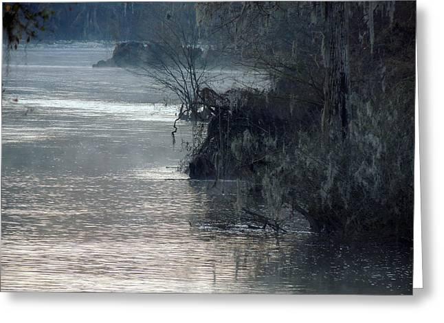 Flint River 28 Greeting Card