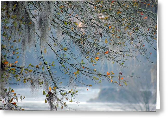 Greeting Card featuring the photograph Flint River 29 by Kim Pate