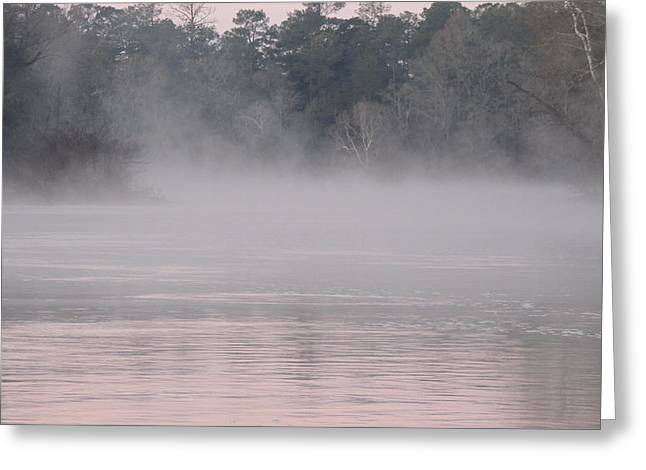 Greeting Card featuring the photograph Flint River 3 by Kim Pate