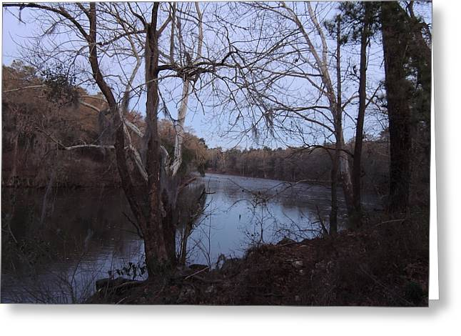 Greeting Card featuring the photograph Flint River 4 by Kim Pate