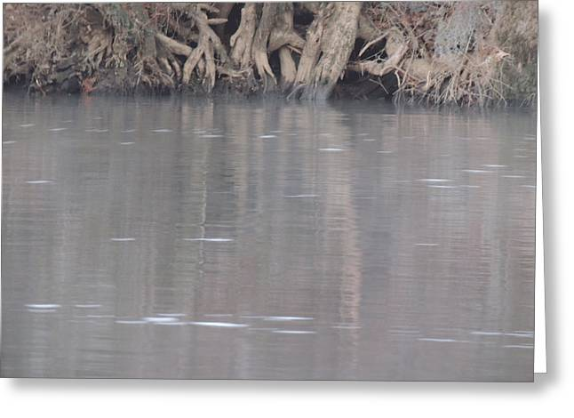 Greeting Card featuring the photograph Flint River 6 by Kim Pate