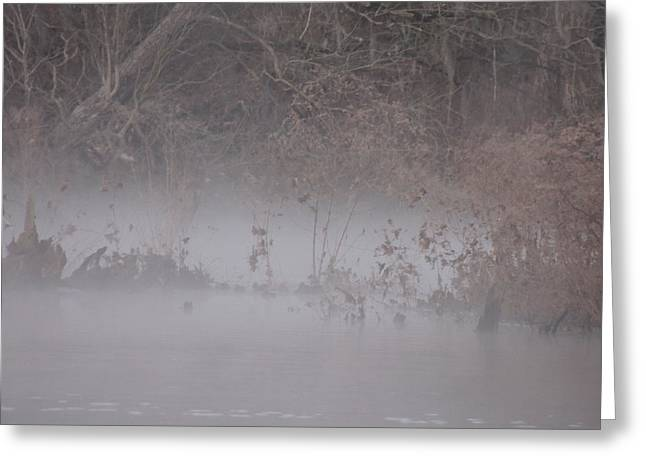 Greeting Card featuring the photograph Flint River 7 by Kim Pate