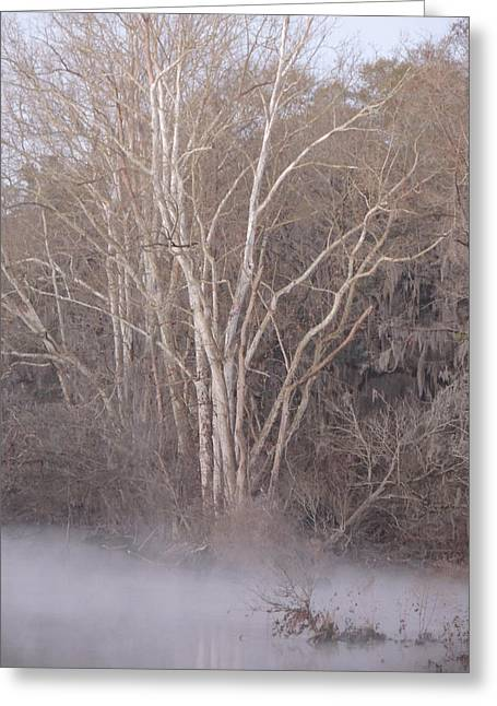Greeting Card featuring the photograph Flint River 9 by Kim Pate