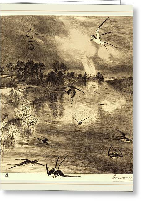 Félix Bracquemond French, 1833-1914, The Swallows Greeting Card by Litz Collection