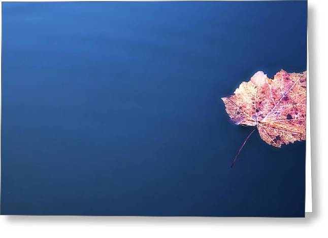 Floating On Greeting Card