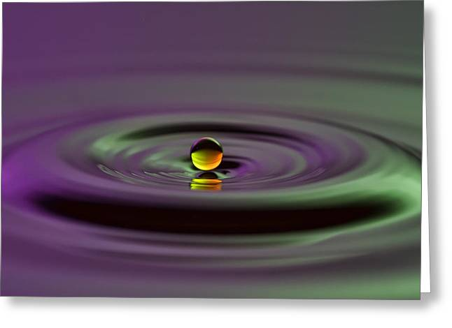 Floating On Water Greeting Card by Brad Granger
