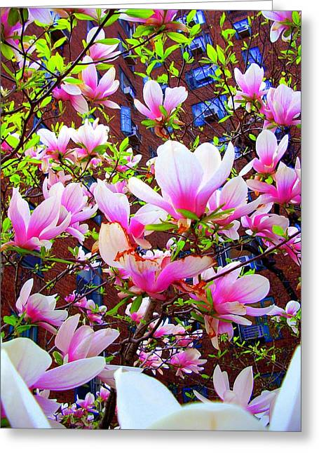'floating Petals' Greeting Card