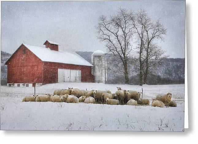 Flock Of Sheep Greeting Card by Lori Deiter
