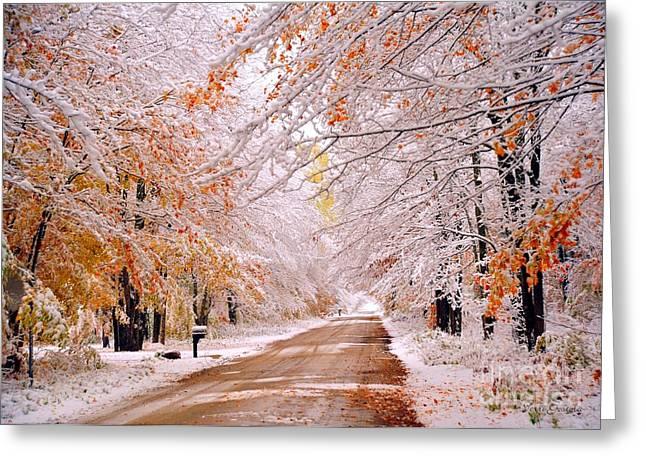 Flocked Autumn Greeting Card by Terri Gostola