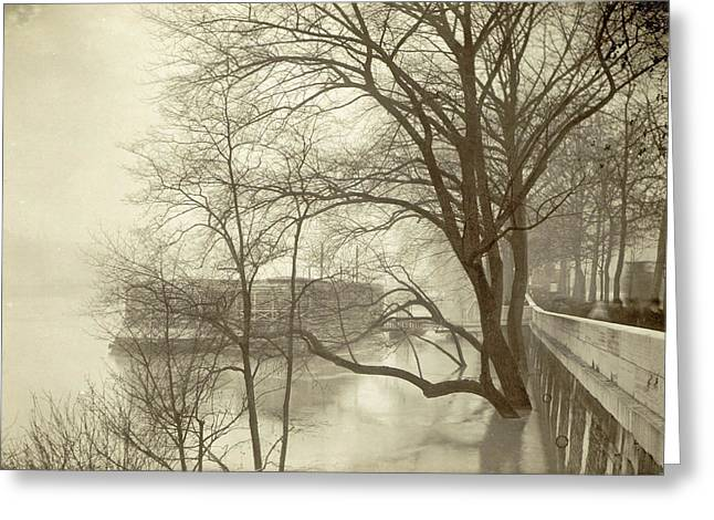 Flooded Seine River With Trees, Boats And Public Greeting Card by Artokoloro