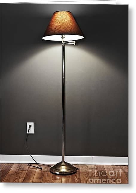Floor Lamp Greeting Card by Elena Elisseeva