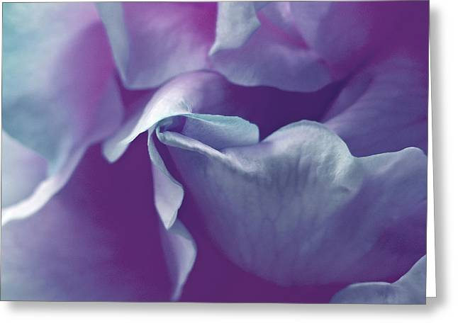 Abstract Blue Purple Green White Flowers Art Work Photography Greeting Card by Artecco Fine Art Photography