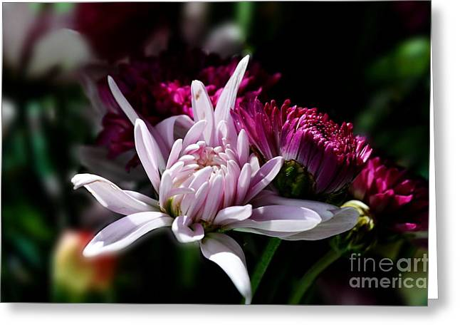 Floral Beauty Greeting Card by Michelle Meenawong
