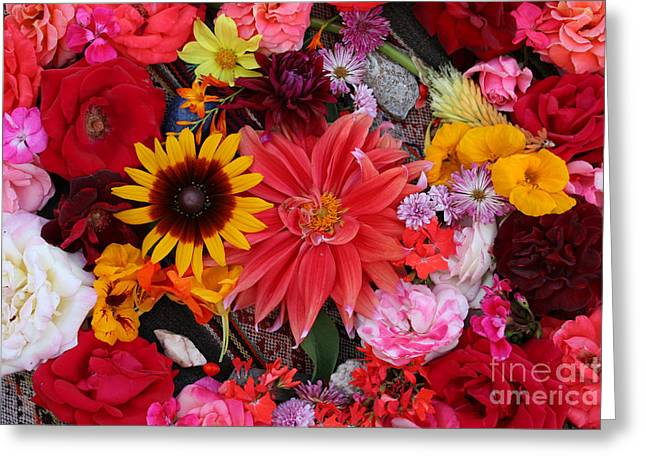 Greeting Card featuring the photograph Floral Bounty by Jeanette French