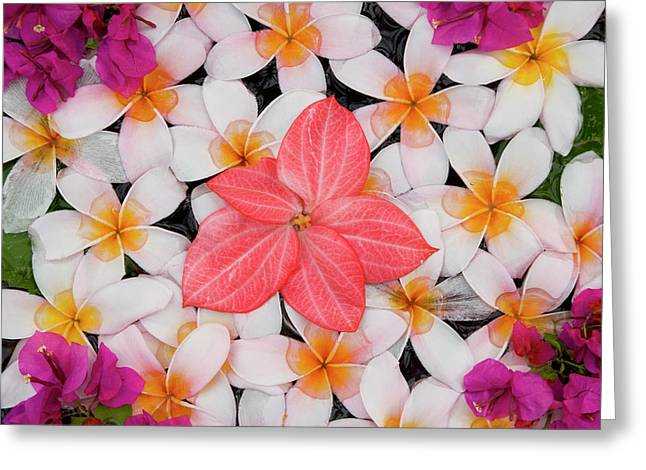 Floral Decoration, Palau Pangkor Laut Greeting Card by Peter Adams
