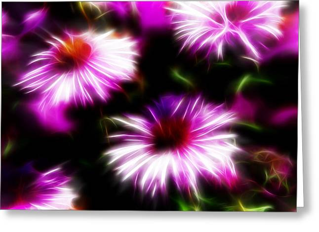 Greeting Card featuring the photograph Floral Fireworks by Selke Boris