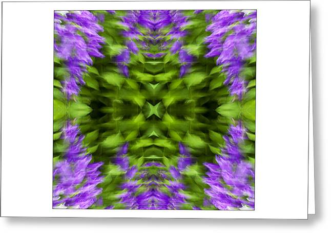 Floral Focus Greeting Card by Don Powers