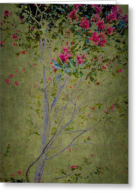 Greeting Card featuring the photograph Floral Interlace by Linde Townsend