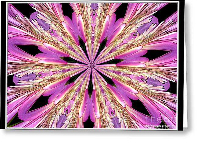Greeting Card featuring the photograph Floral Kaleidoscope  Waterlily by Rose Santuci-Sofranko