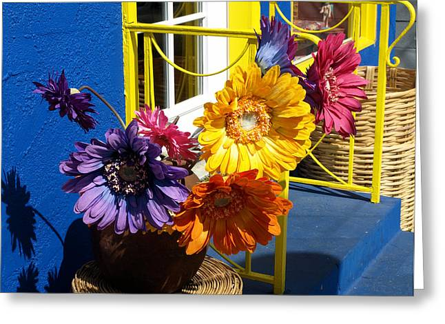 Flores Colores Greeting Card