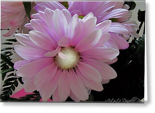 Florescence In Lavender Pink Greeting Card by Danielle  Parent