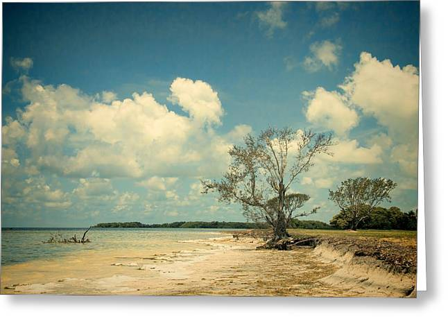 Florida Bay 6947a Greeting Card by Rudy Umans