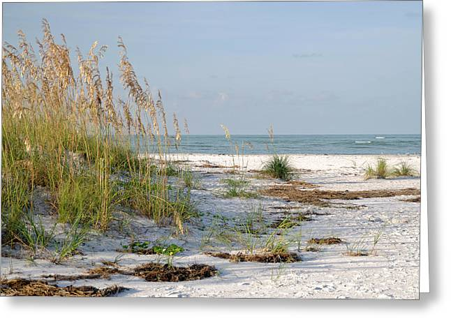 Florida Beach 2 Greeting Card