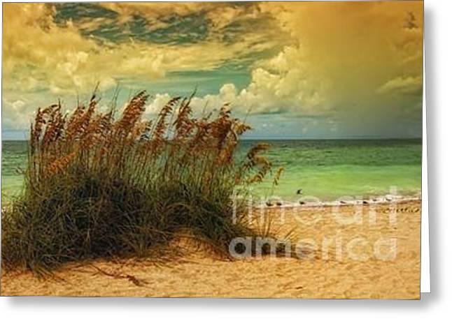 Florida Beach Greeting Card by Annette Allman
