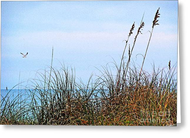 Greeting Card featuring the photograph Florida Dunes by Melissa Sherbon