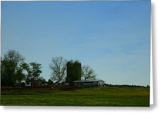 Florida Farmlands Greeting Card by Debra Forand
