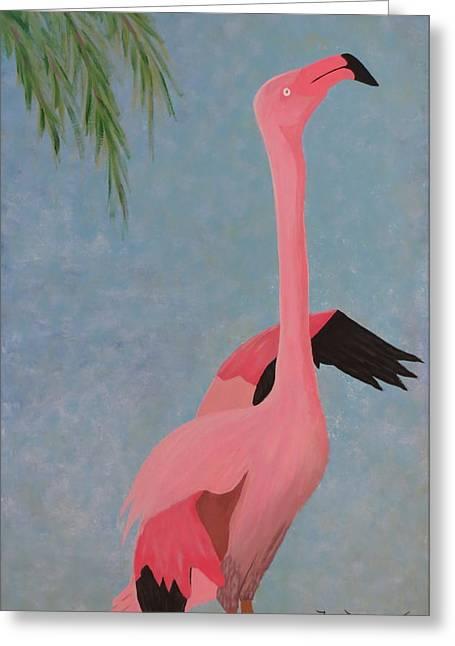 Florida Flamingo Greeting Card by Tim Townsend