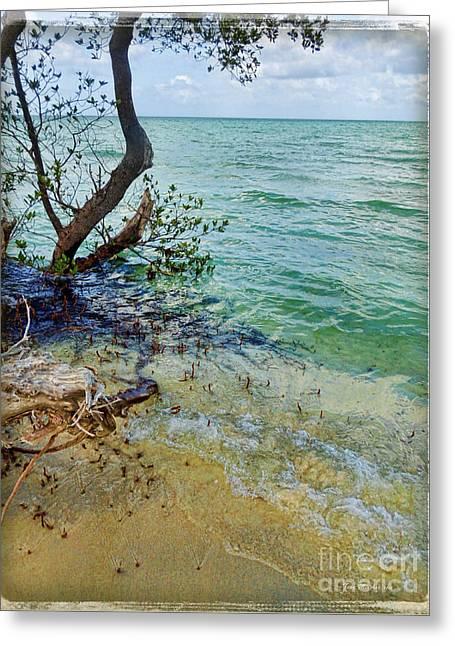 Florida Keys Tropical Island Greeting Card by Joan  Minchak