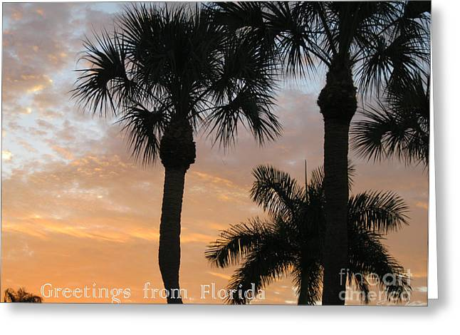 Florida Morning Sky Greeting Card by Oksana Semenchenko
