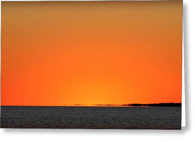 Florida Orange Greeting Card