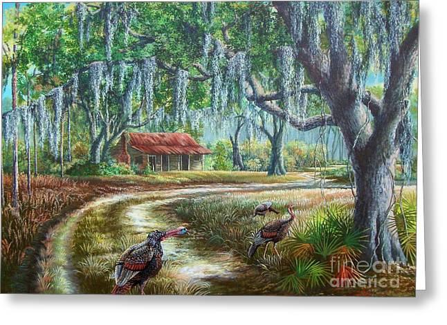 Florida Osceola Turkeys - Evening Shadows Greeting Card by Daniel Butler