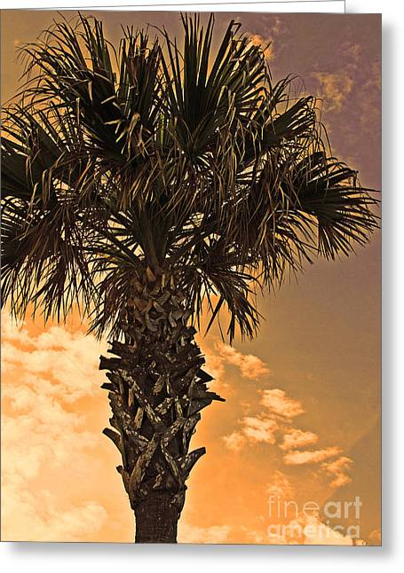 Florida Palm Greeting Card by Melissa Sherbon