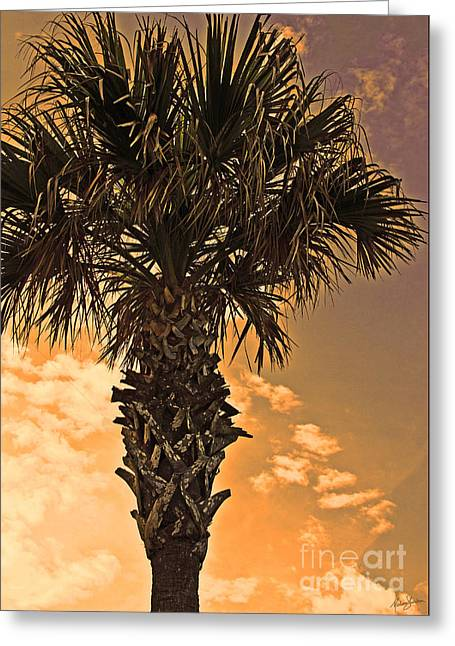 Florida Palm Greeting Card