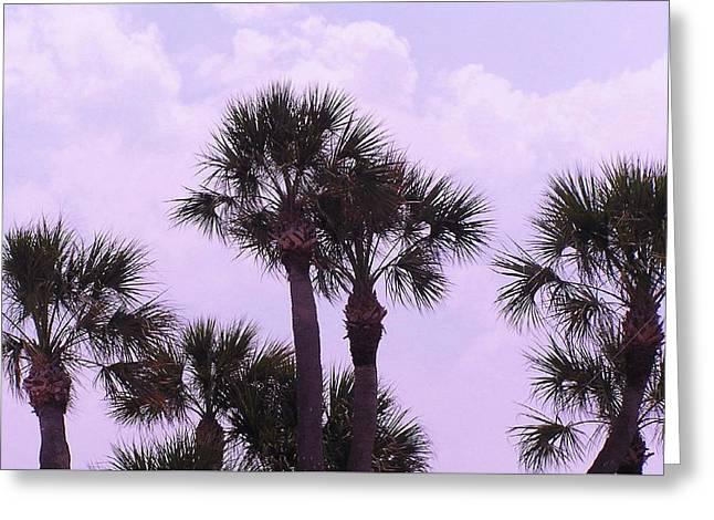 Florida Palms Greeting Card by John Wartman