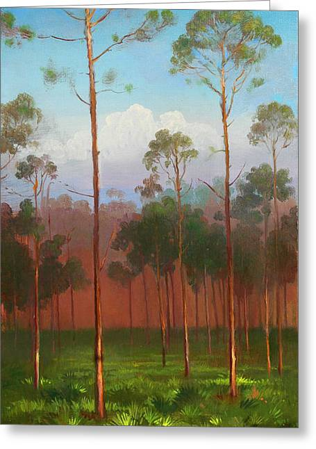 Florida Pines Greeting Card by Keith Gunderson